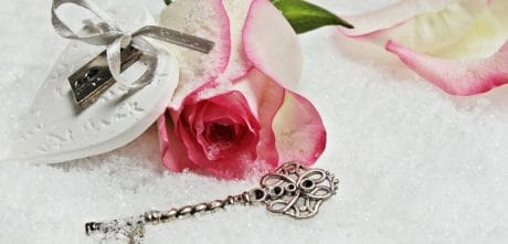 rose, pink, key, padlock, flower, petals, love