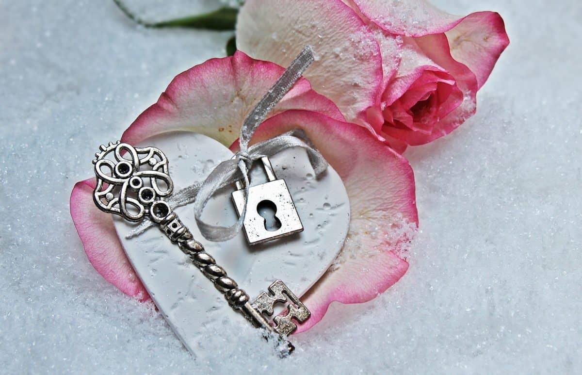 романтика, червена роза, ключ, ключалка, цветя, листенца, любов
