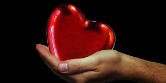 red heart, hand, person, photo studio, finger, skin