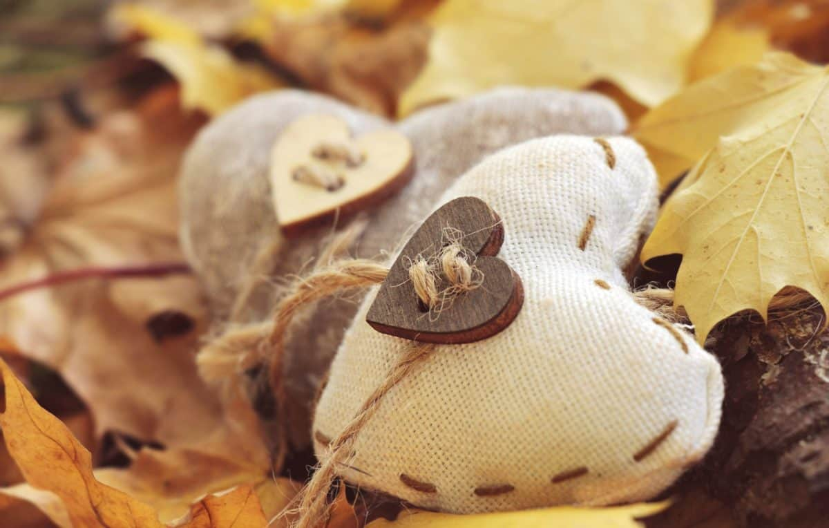 rope, fabric, heart, still life, love, emotion, gift, object, sewing, autumn, leaf