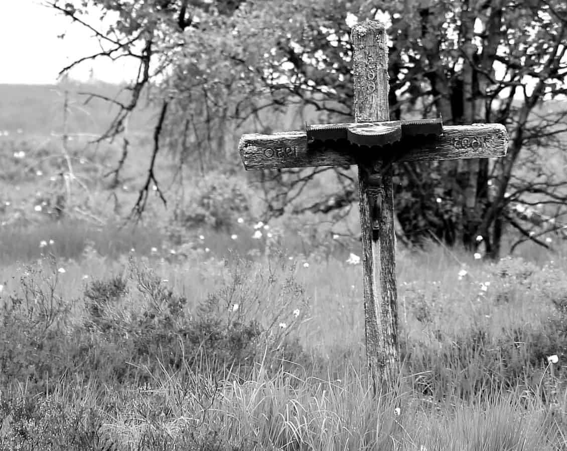 cross, monochrome, tree, grass, cemetery, wood, nature