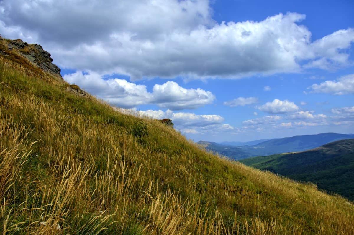 herbe, ciel, paysage, montagne, nature, arbre, extérieur, hill, colline, parc national