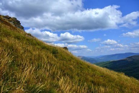 montaña, pasto, cielo, paisaje, naturaleza, árbol, al aire libre, Parque Nacional, Cerro, colina