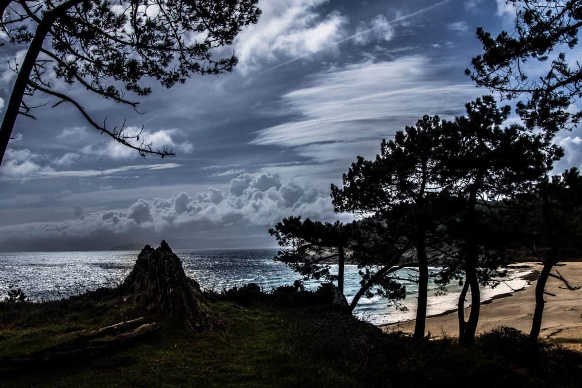 boom, hemel, landschap, nationaal park, mooie foto, bay, water, natuur, strand, zee, berg