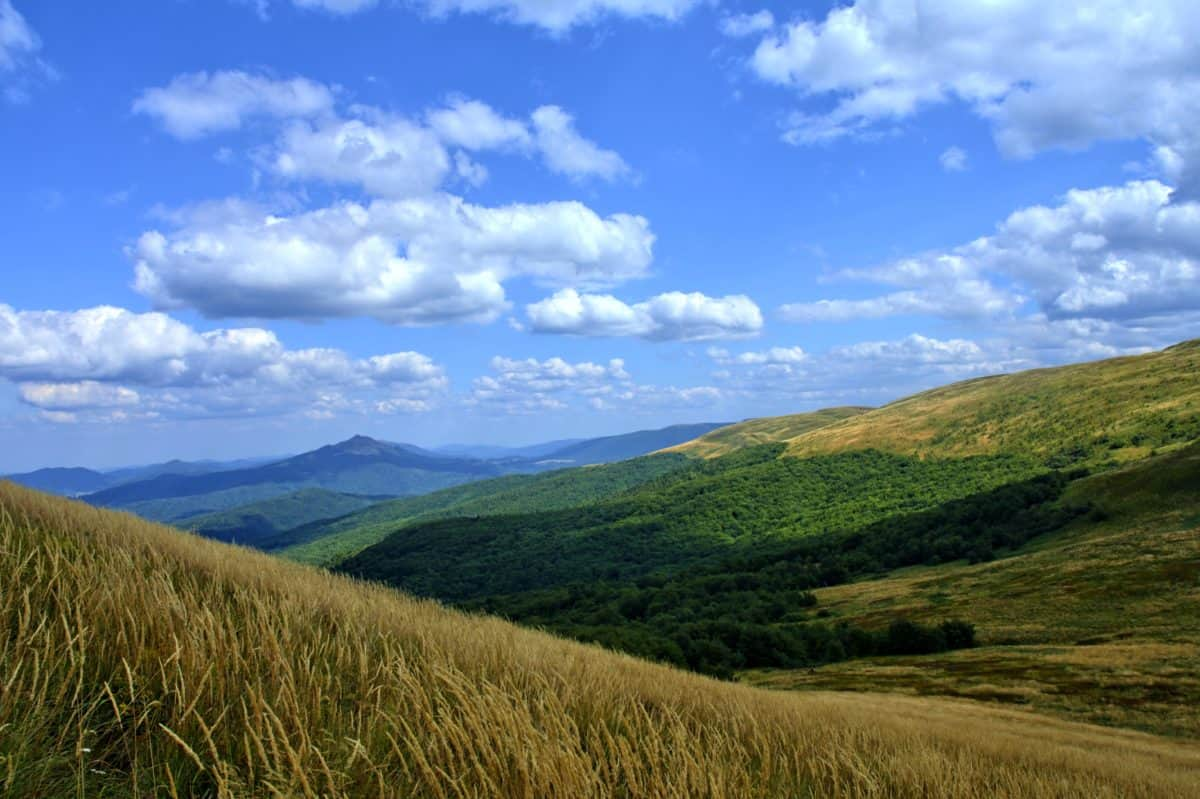 hilltop, nature, landscape, blue sky, daylight, outdoor, grass, mountain