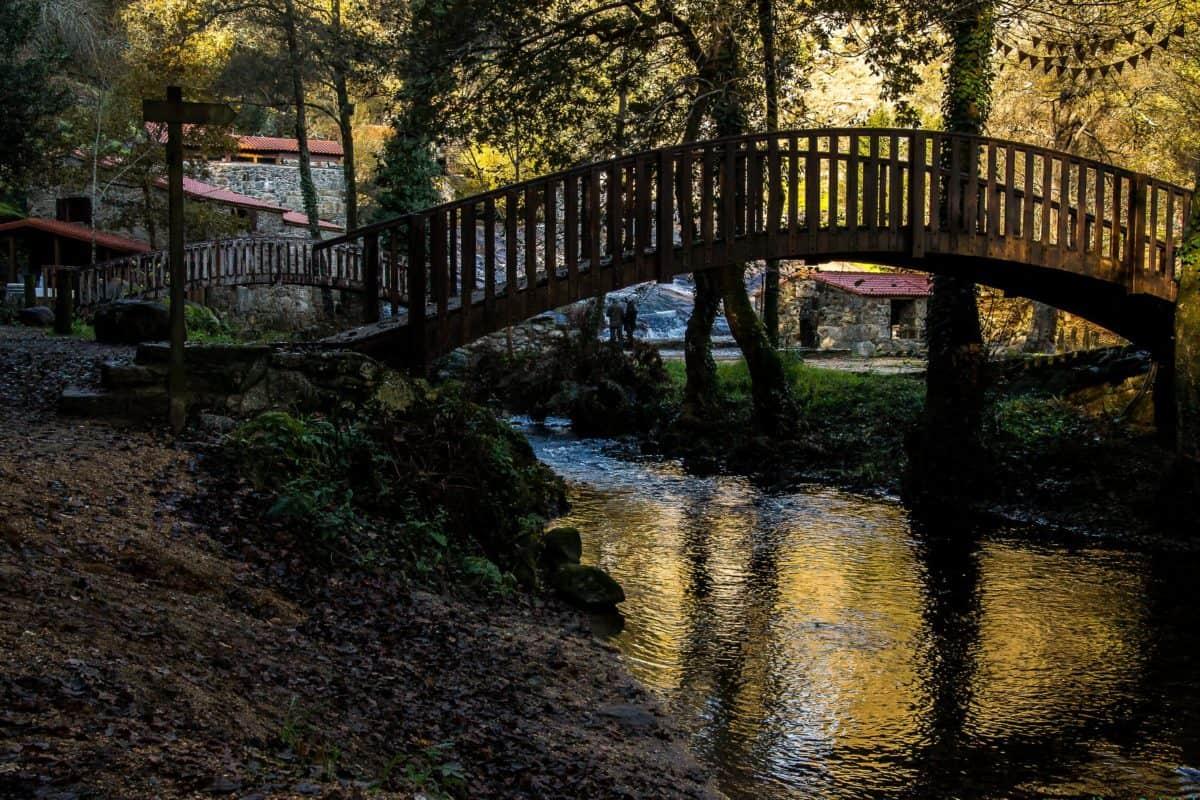 Parc national, coucher de soleil, eau, arbre, paysage, rivière, bois, pont, forêt, clôture