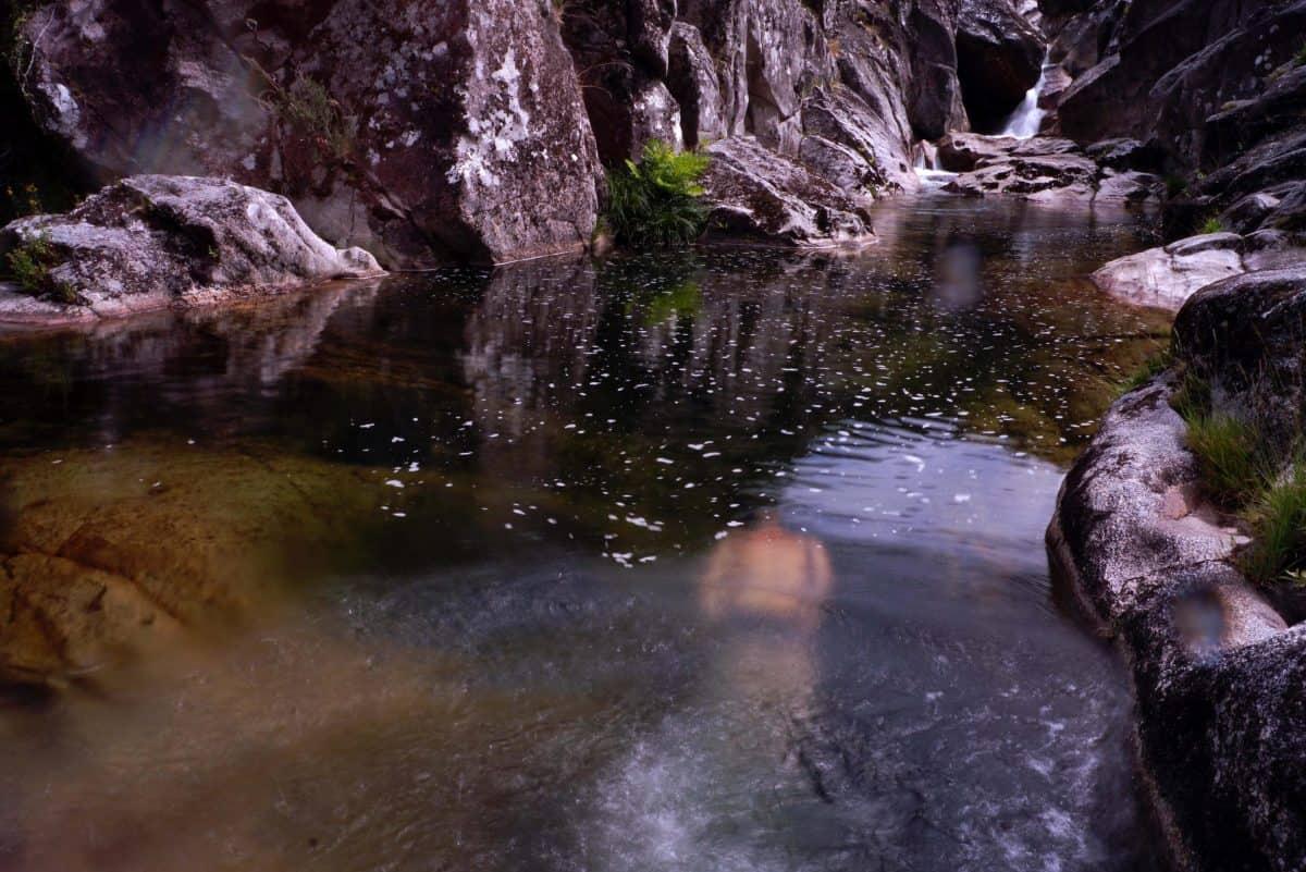 stream, nature, water, daylight, wet, river, mountain