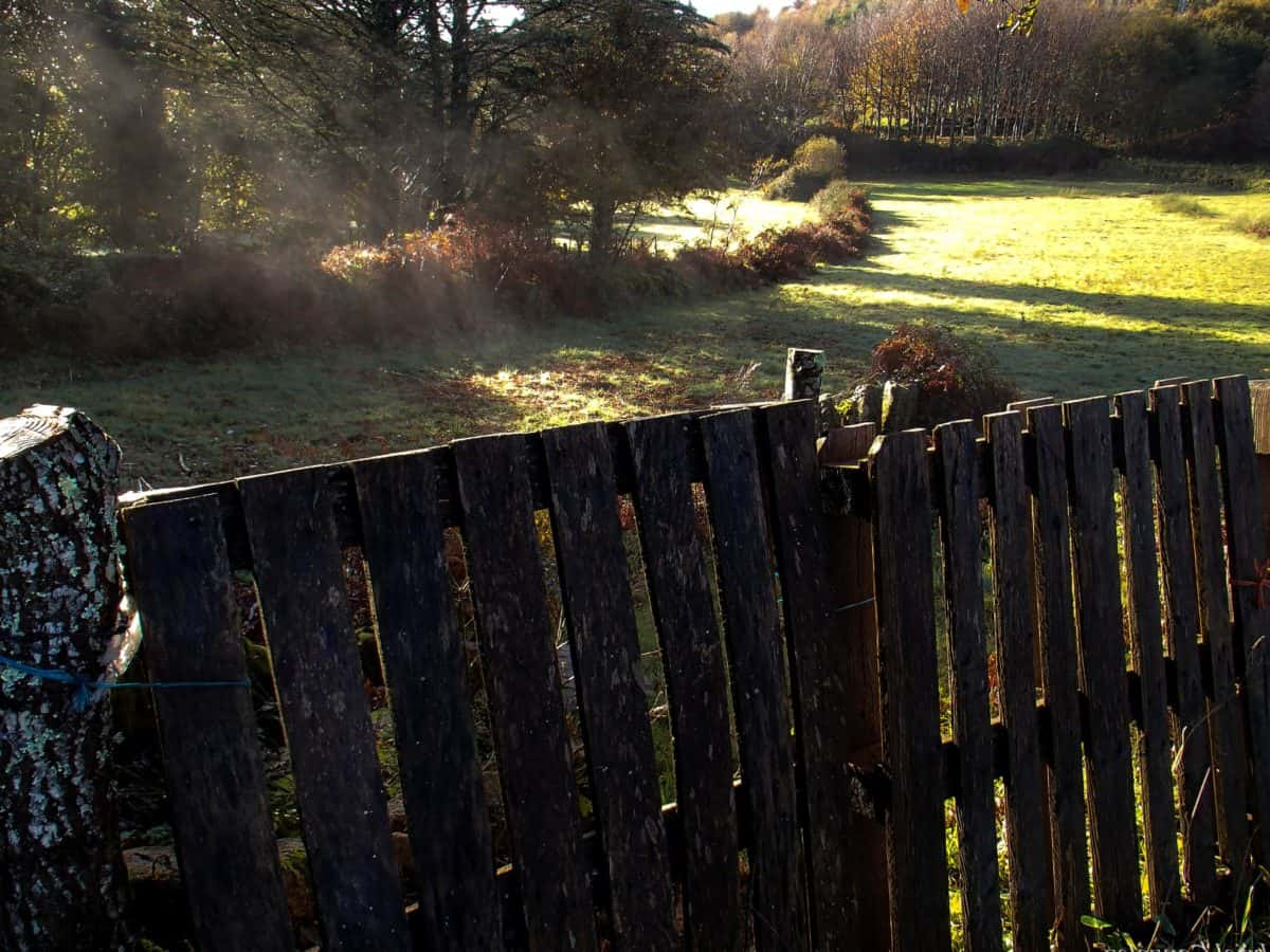 fence, daylight, outdoor, countryside, hill, meadow, landscape, wood, structure,