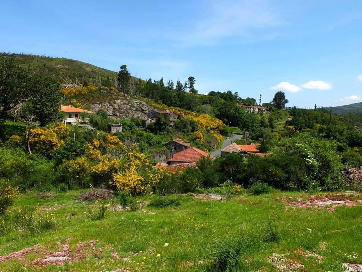 nature, landscape, house, mountain, tree, hill, garden, grass