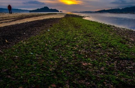 landscape, water, sun, sky, outdoor, daylight, outdoor, grass, dawn