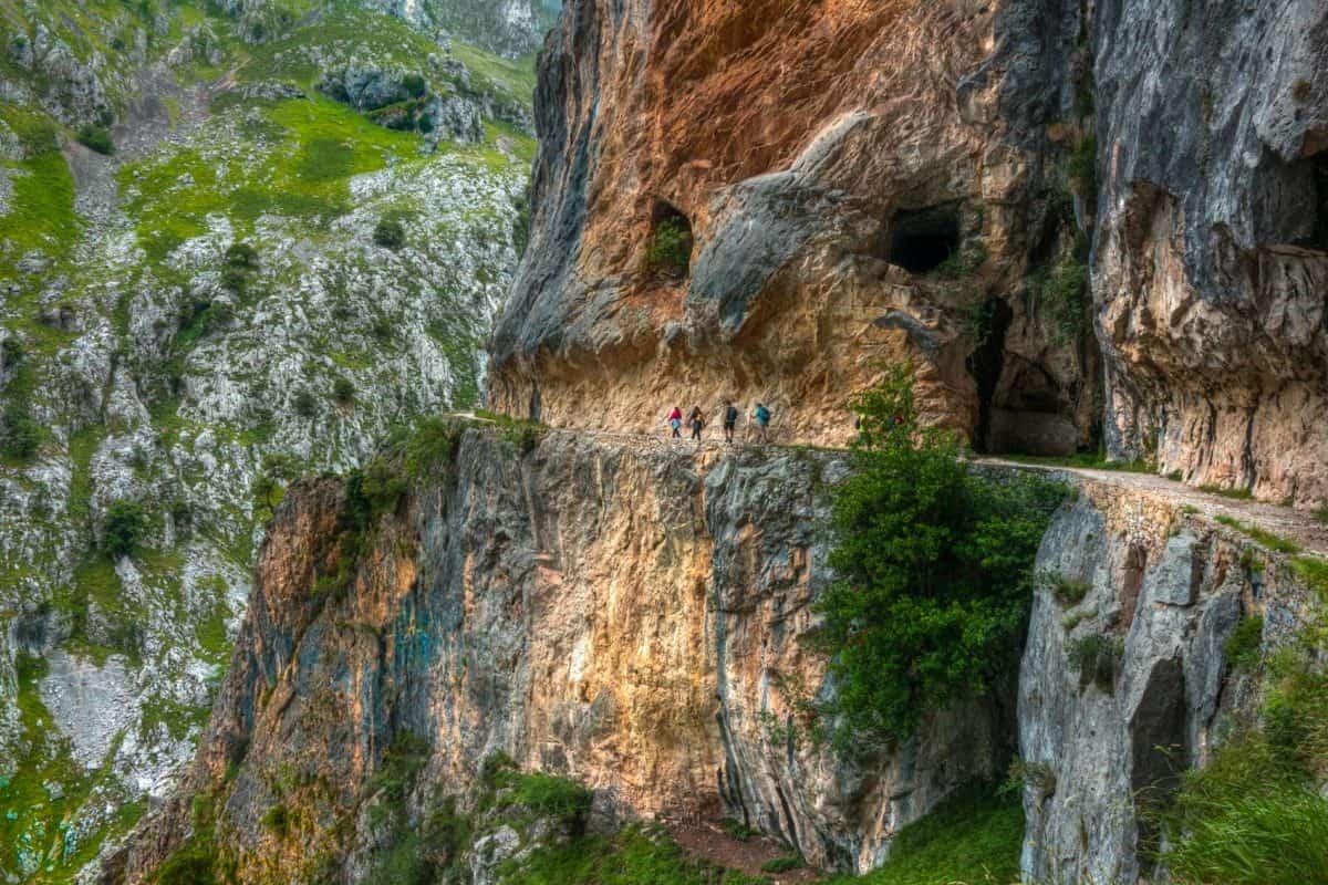 arbre, Pierre, nature, bois, montagne, eau, paysage, falaise