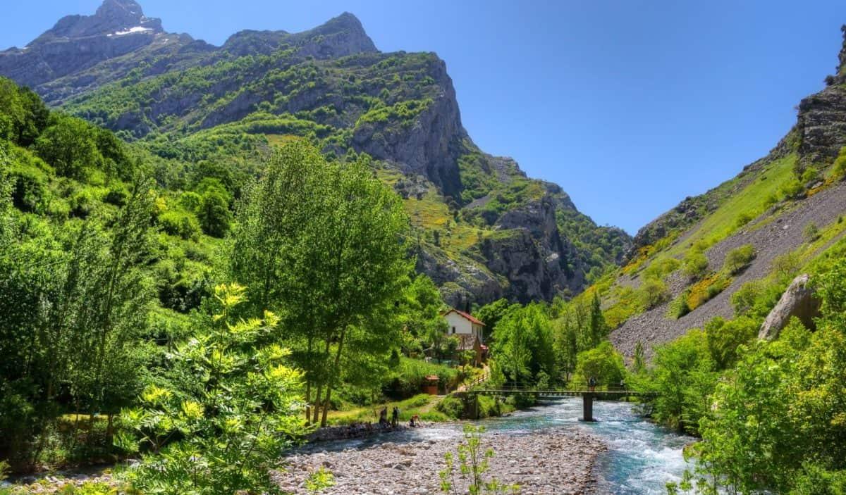 nature, bois, paysage, ciel bleu, rivière, montagne, eau, arbre