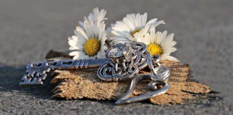 stilleben, nøkkel, tusenfryd, blomst, tre, tekstur, anlegg, smykker