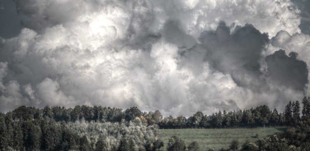 prírody, stromu, krajiny, neba, atmosféra, cloud, zamračené, Vonkajší