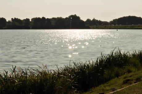 Río, árbol, lago, agua, paisaje, reflejo, al aire libre