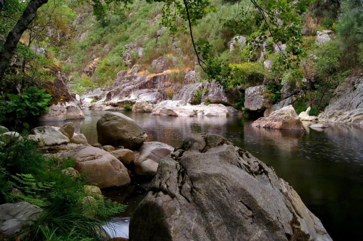 chute d'eau, rivière, eau, bois, paysage, flux, nature