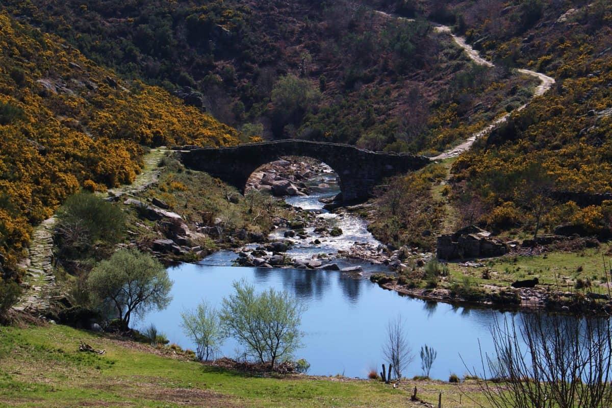 Lago, fiume, paesaggio, natura, montagna, cielo, acqua, foresta