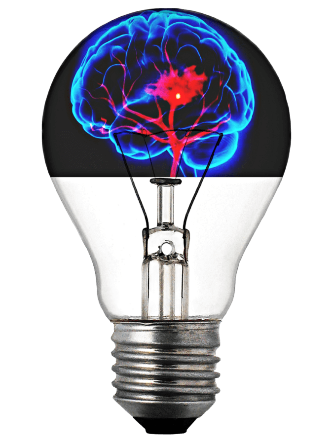 photomontage, light bulb, brain, inspiration, electricity, invention