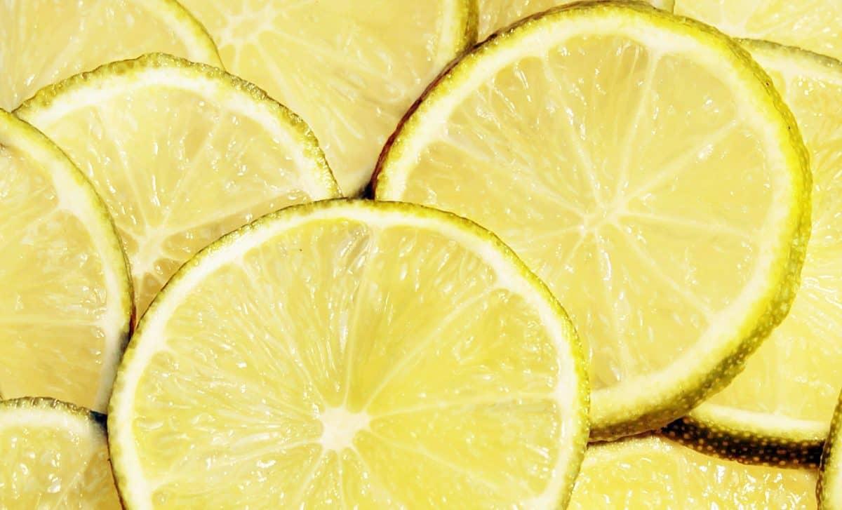 fruits, nourriture, citron, agrumes, tranche, vitamine