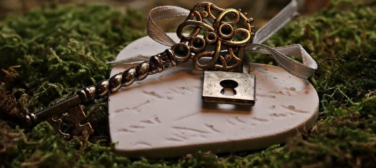 heart, metal, key, moss, romance, padlock