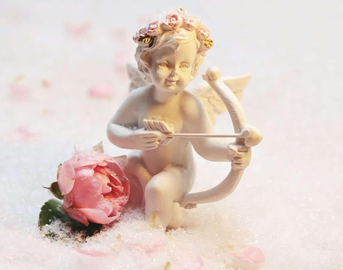 Još uvijek život, objekt, cvijet, foto studio, ukras, ukras, anđeo, slika, zima