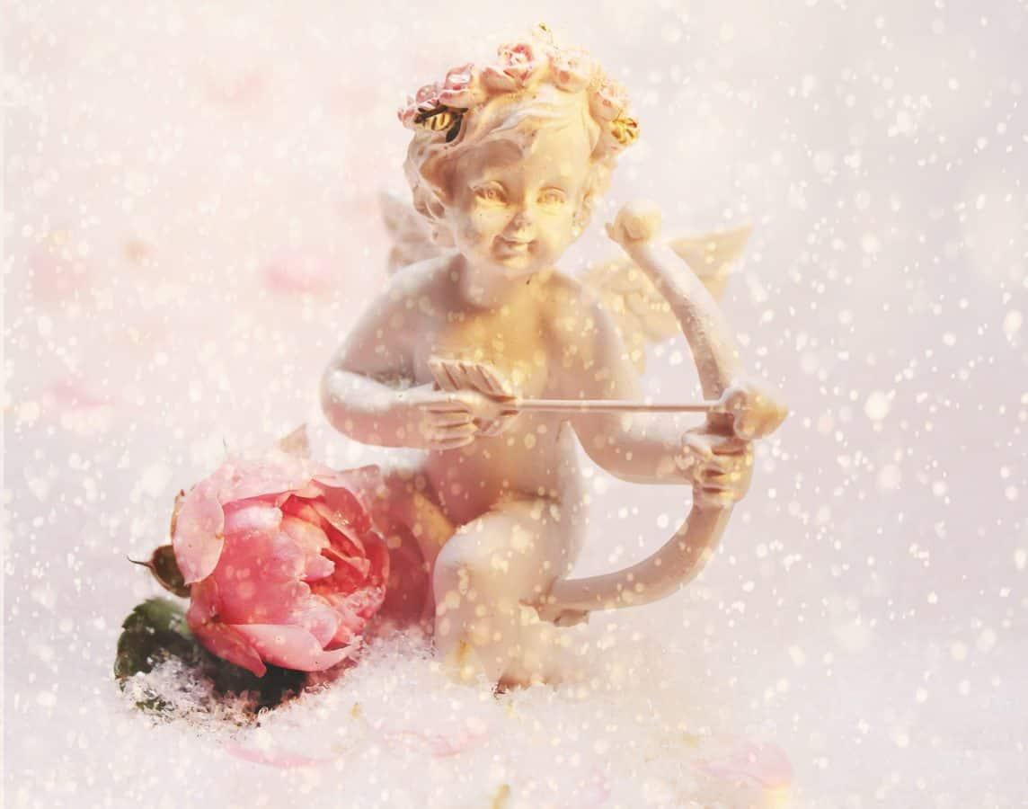 cold, interior decoration, snow, winter, snowflake, angel, figure, winter, flower