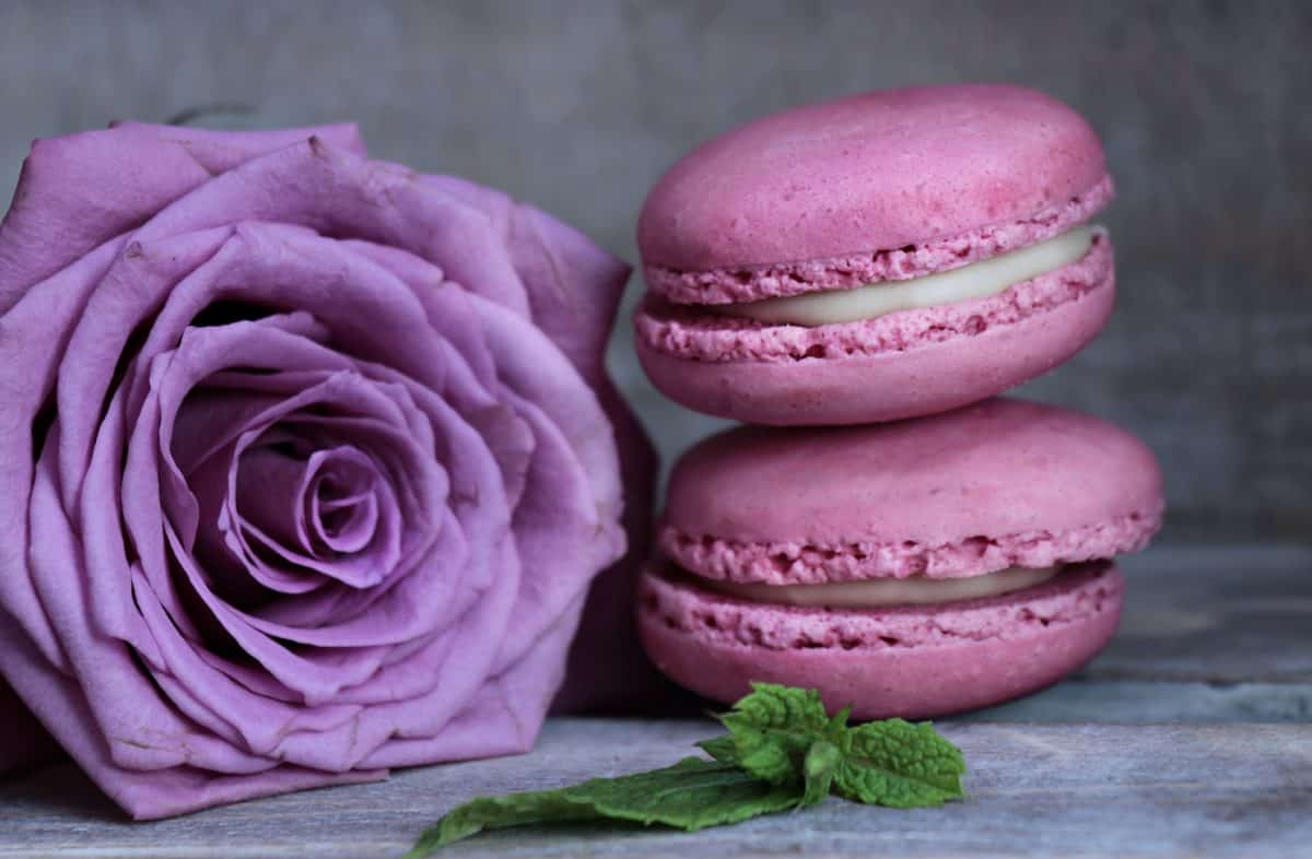 floare, trandafir, dulce, roz, desert, zmeura, decorare