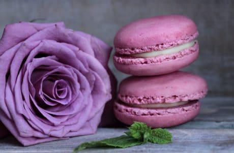 fleur, rose, sucré, rose, dessert, framboise, décoration