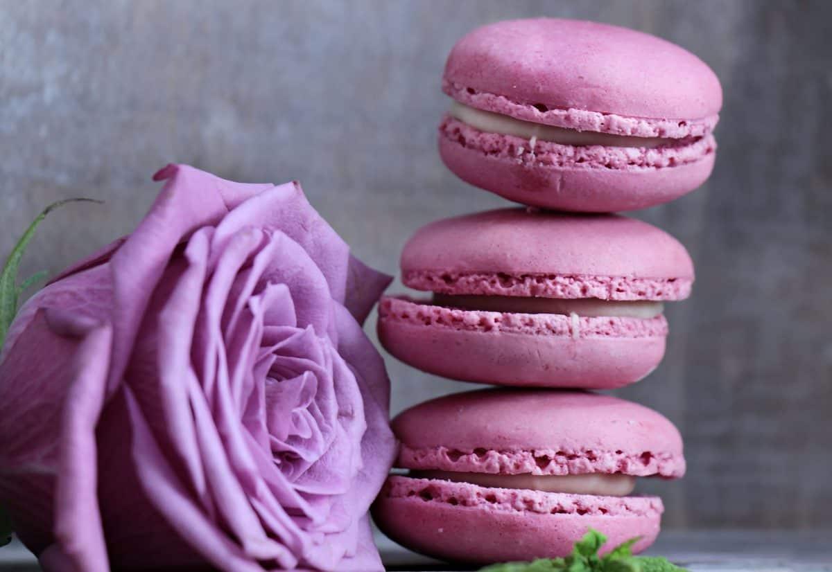 Blume, Rose, Kuchen, süß, Rosa, Dessert, Himbeere, Dekoration