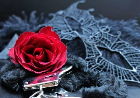 mask, fur, metal, handcuffs, romance, flower, rose, black, petal
