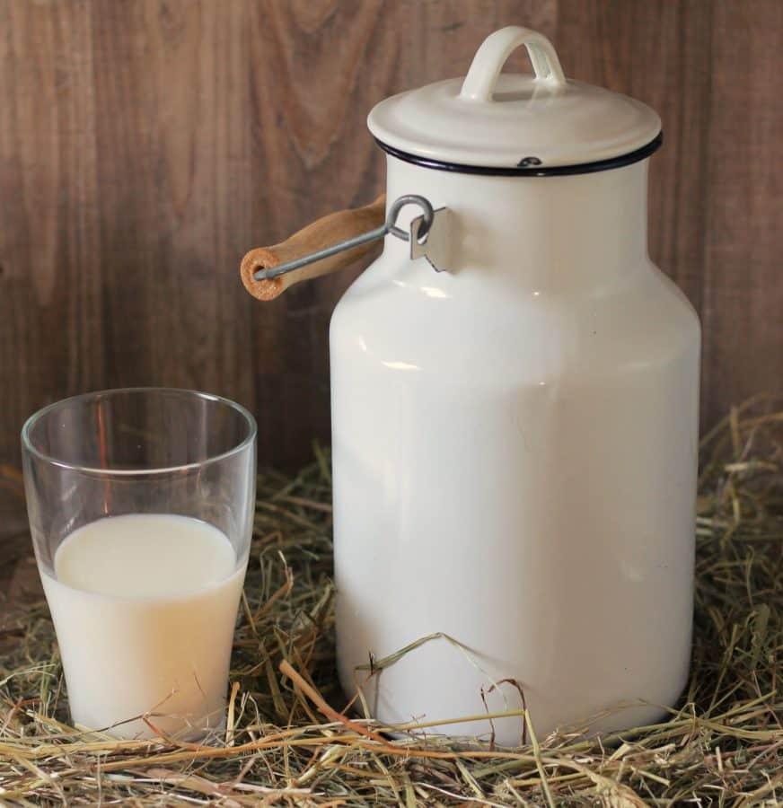 photo studio, milk container, calcium, drink, food, bottle, liquid