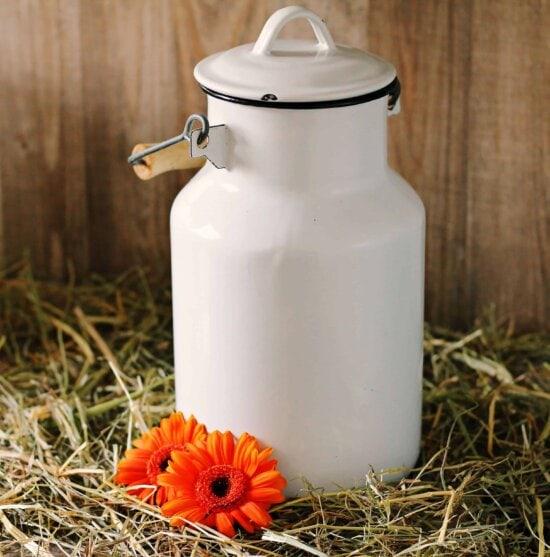still life, hay, flower, object, lid, organic