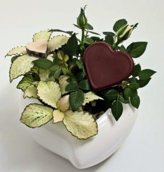 Stilleven, decoratie, hart, groene blad, voedsel, regeling, binnen