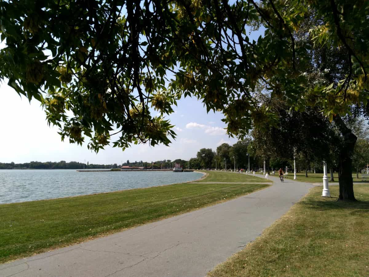 landscape, Palic lake, Serbia, tree, nature, road, grass, outdoor, sky, water