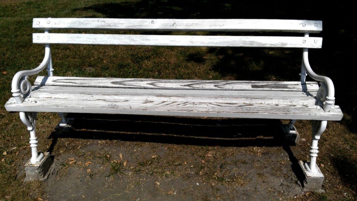 banc extérieur, blanc, plein air, terre, bois, herbe, bois, meubles