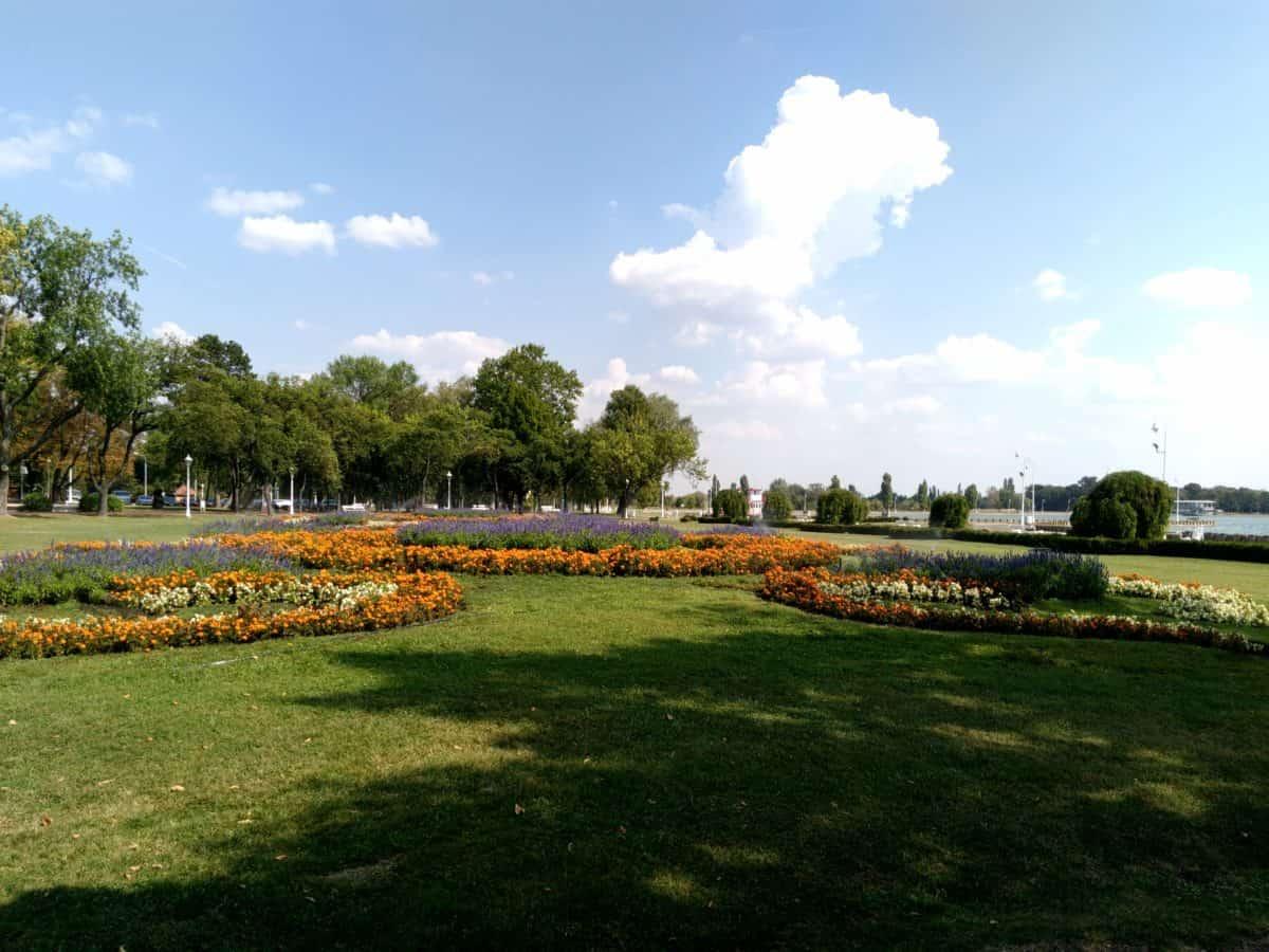 lanskap, pohon, alam, rumput, langit, Taman bunga, Lapangan, Kolam