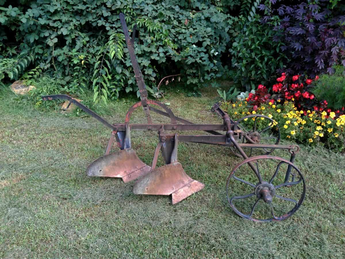 material, old, cast iron, wood, leaf, tree, flower, garden, nature, grass, tool, outdoor