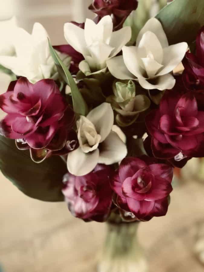 buket, natur, blad, blomst, Rose, kronblad, arrangement, lyserød, blomstre
