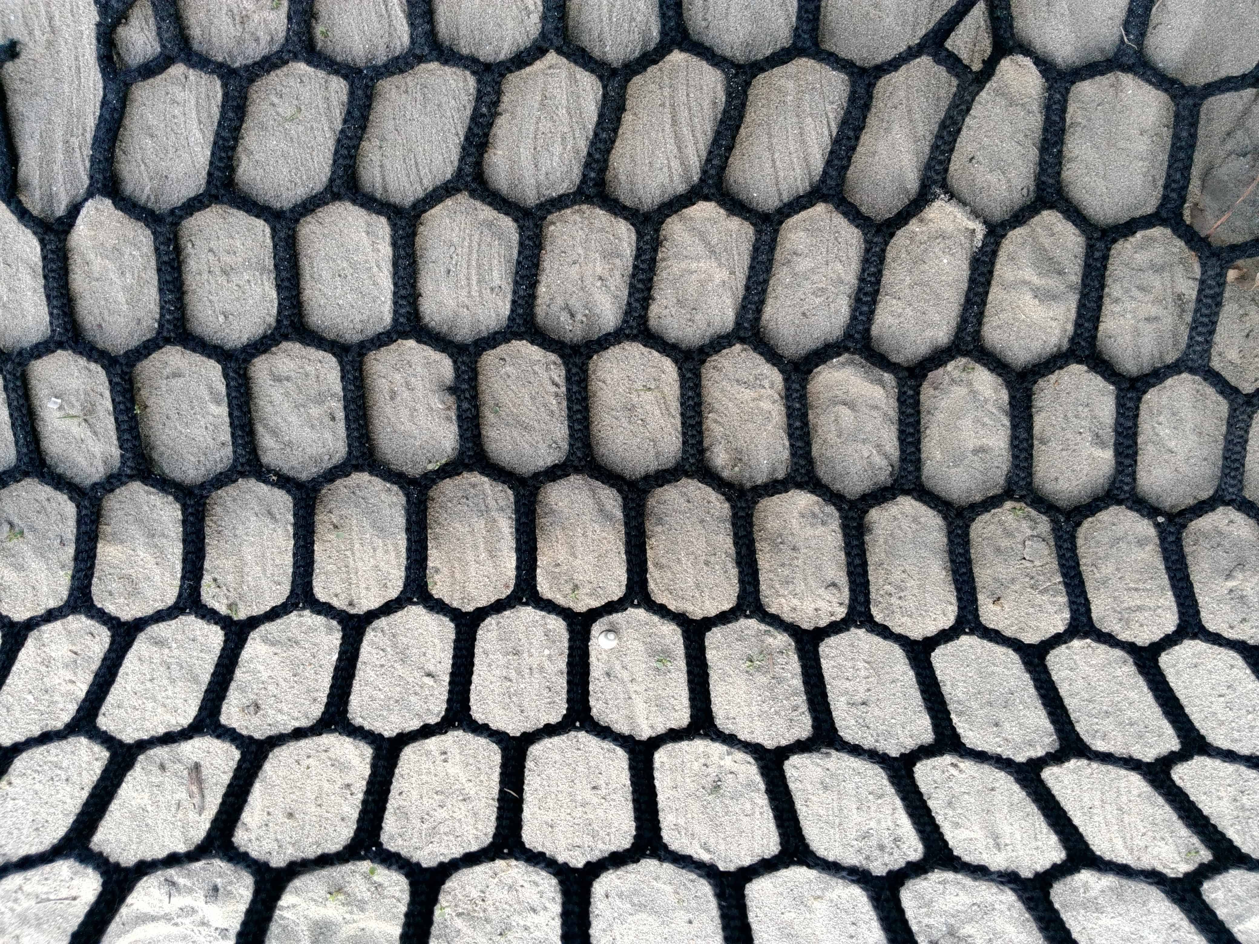 Free Picture Shape Web Texture Design Abstract