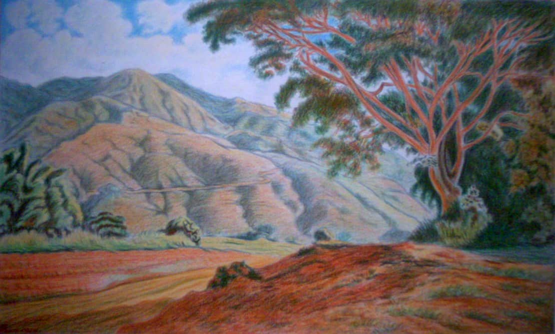 tree, oil painting, landscape, canyon, valley, mountain, desert, rim, sky