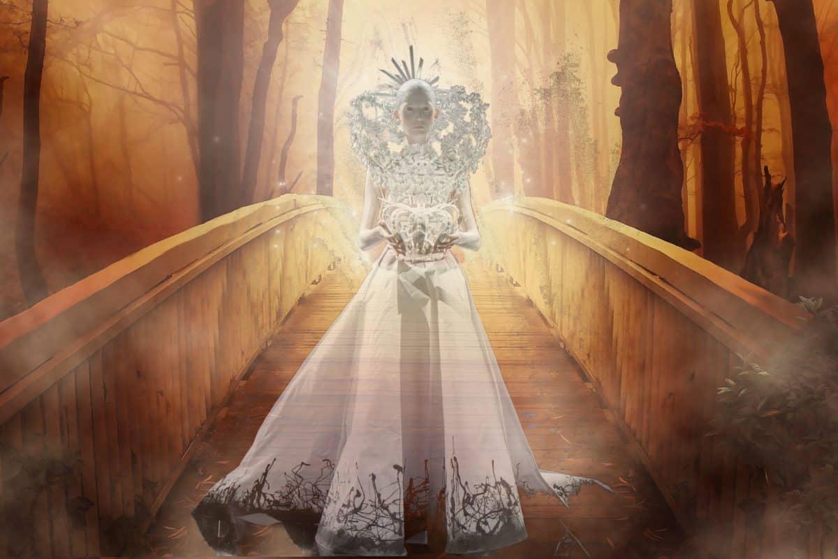 τέχνη, γυναίκα, νέα, πριγκίπισσα, φωτομοντάζ, δάσος, γέφυρα, δέντρο