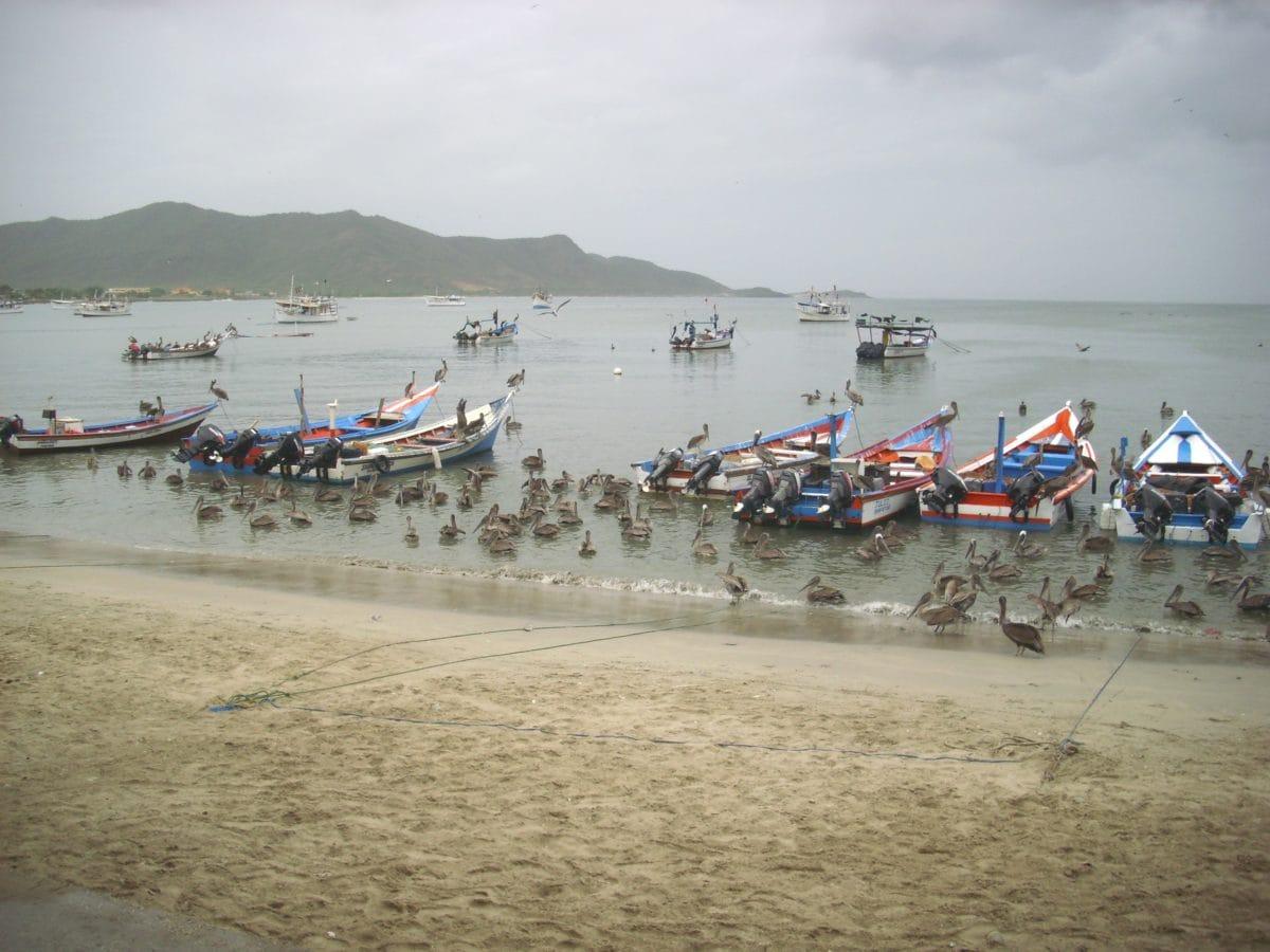 watercraft, boat, sea, water, beach, vehicle, seashore