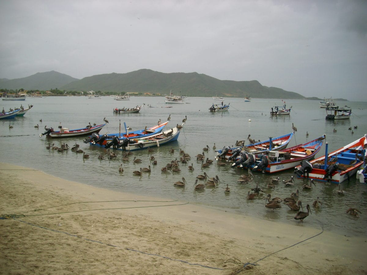 watercraft, sea, boat, summer, vehicle, seashore, water, outdoor, island