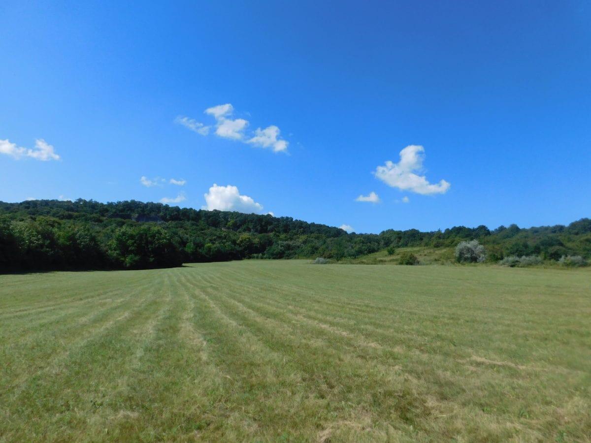 μπλε ουρανός, τοπίο, ύπαιθρος, χλόη, τομέας, φύση, γεωργία