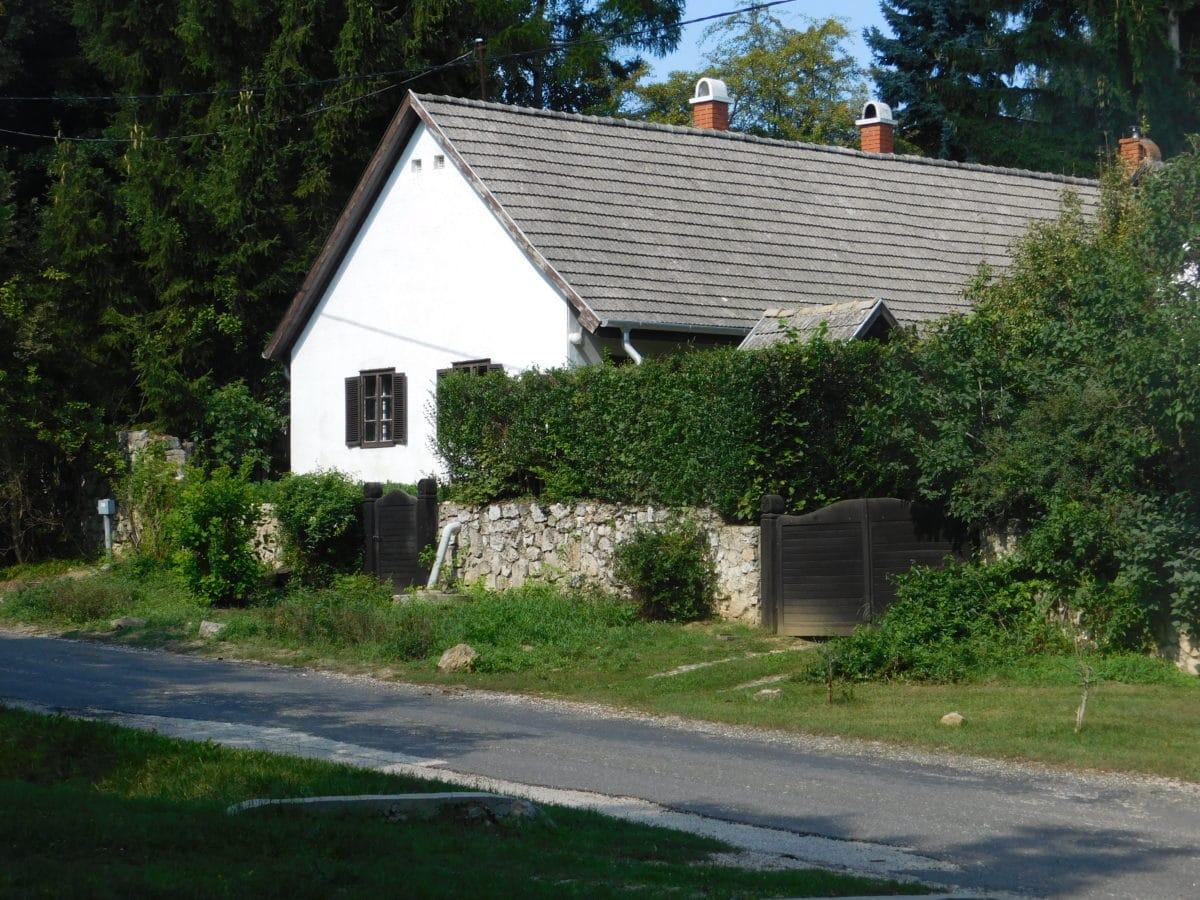 家、ハンガリー、村、通り、田園、道、家、木、屋外、草