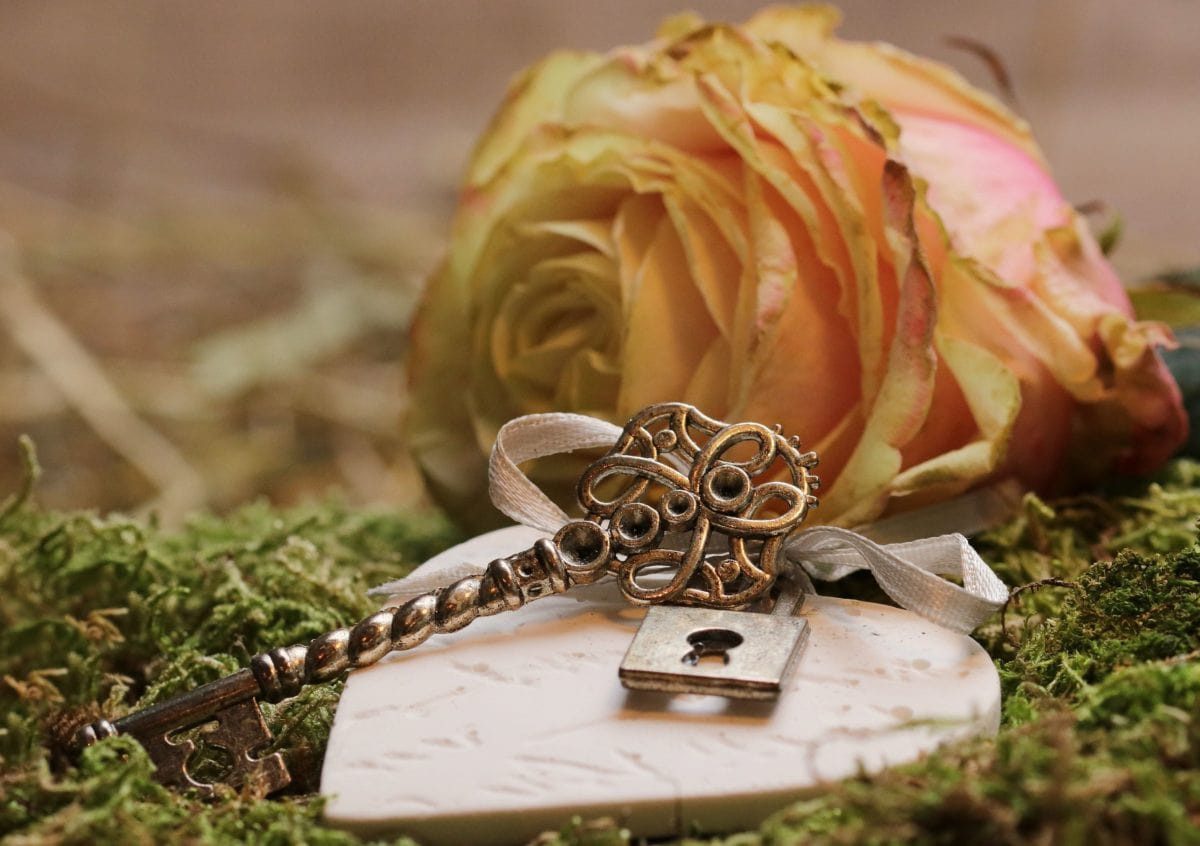 leaf, plant, petal, flower, metal, key, rose