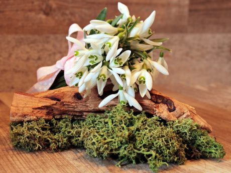wood, flower, arrangement, plant, wooden
