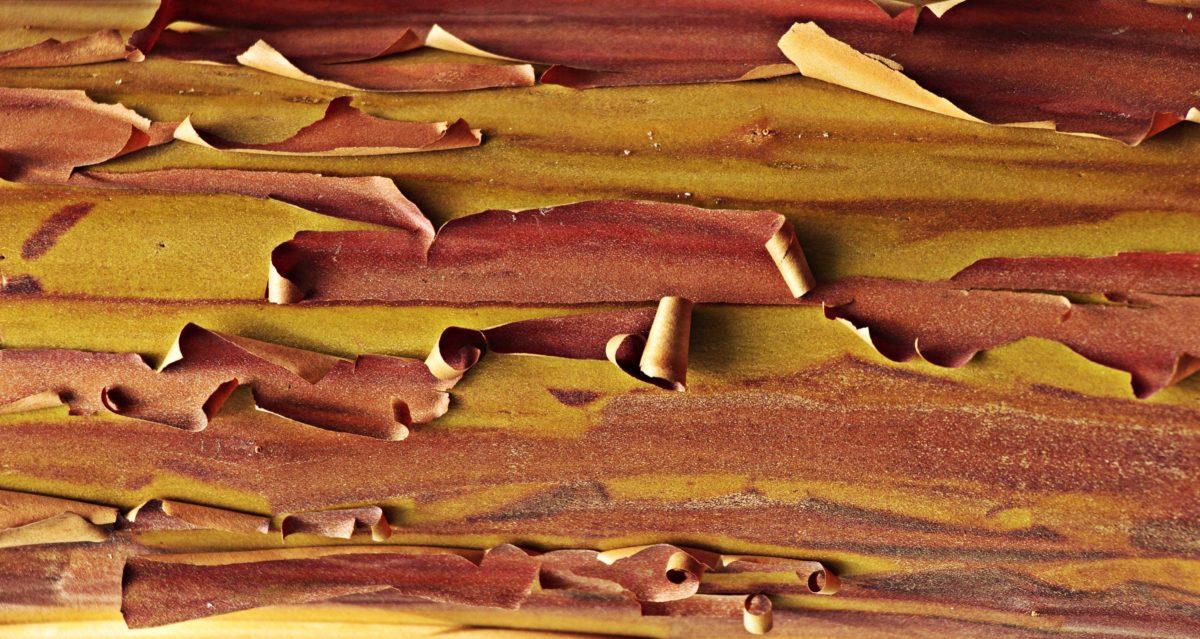 væg, tekstur, træ, overfladeareal, maling