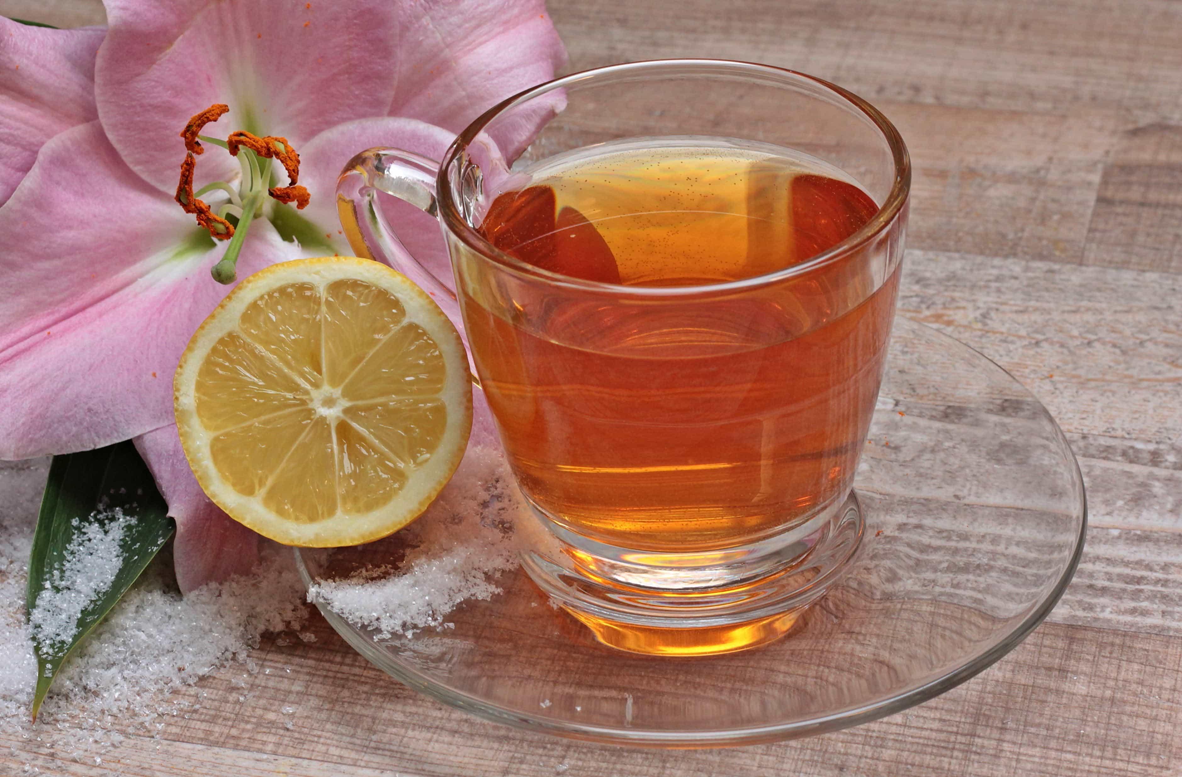 Free picture: drink, tea, glass, fruit, citrus, beverage, lemon