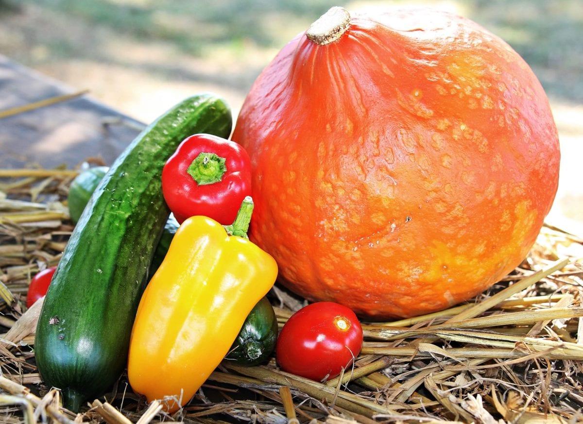 листа, на храните, зеленчуци, тиква, червен пипер, домат, плодове, вегетариански